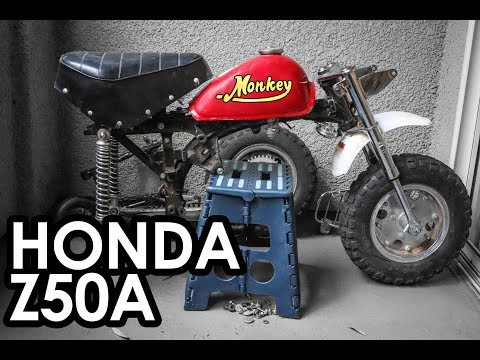 New Honda Monkey Street Legal Pit Bike Build