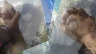 Te Amo I Love You I Want You - Alan Y Mimi (l)