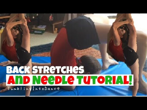 Back Stretches and Needle Tutorial//TumblingIntoDance