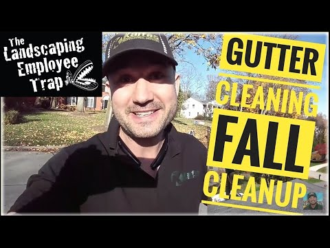 How Much Do I Charge for Gutter Cleaning & Fall Cleanup - Landscaping Business tips