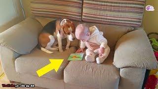 تركوا الكلب بمفرده مع طفلتهم وقاموا بالتصوير -  لن تتخيل ماذا حدث ؟؟!!