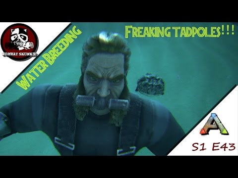 ARK: Water Breeding Beelzefufos And A New Haircut