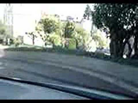 Five Idiots Drive Down Lombard Street