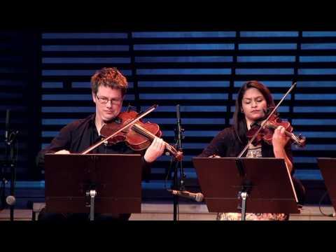 بلور بنفش: کنسرت جاوید افسری راد وارکستر موسیقی ملل نروژ - قسمت اول