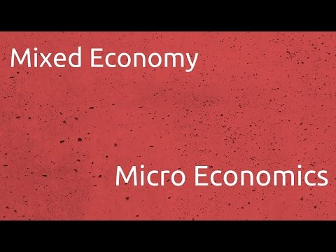 What is Mixed Economy | Introduction to Micro Economics | CA CPT | CS & CMA Foundation