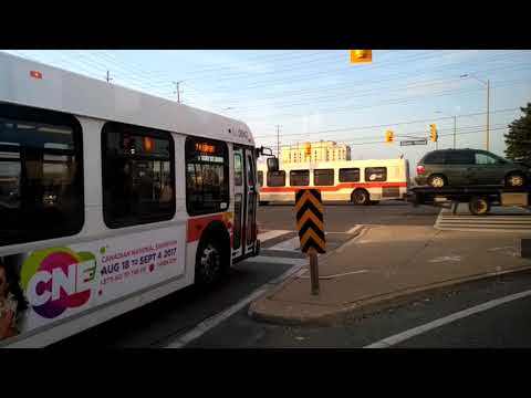 Mississauga - Bus Ride