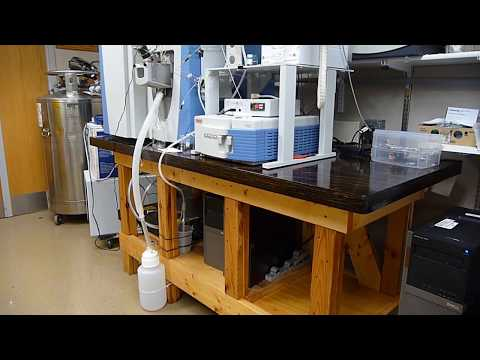 DIY Lab Table/ WORK BENCH ... TOUGH, Sturdy, BIG, and easy to build ... 36