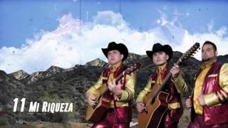 Mi Riqueza - Los Plebes del Rancho de Ariel Camacho - DEL Records 2016