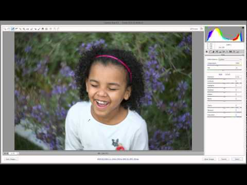 How to Use the White Balance Tool in Adobe Camera RAW