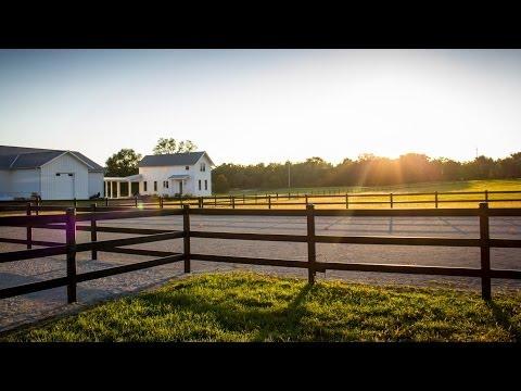 Buckley Steel Board Horse Fence