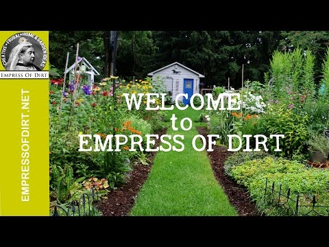 Welcome to Empress of Dirt