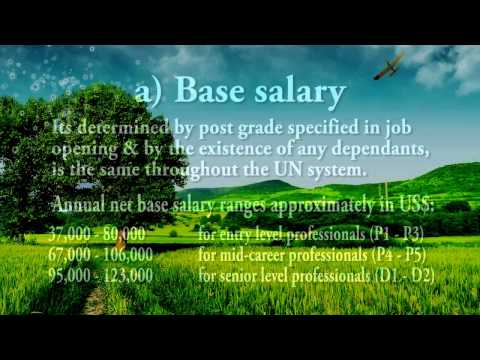 UN Jobs Important Tips on Pay and benefits