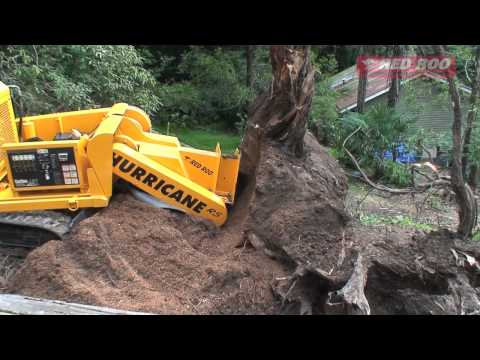 Tree Root Removal Removing Tree Roots