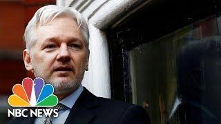 Ecuador Grants Citizenship To Wikileaks Founder Julian Assange | NBC News
