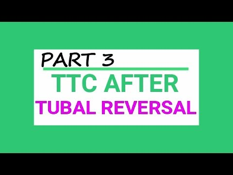 TTC After Tubal Reversal ! WE ARE PREGNANT! [ PART3 ]