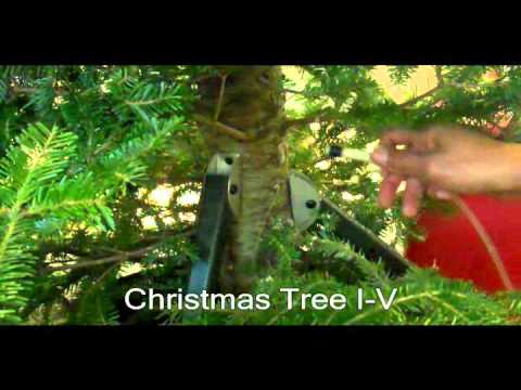 Intravenous Watering Christmas Tree I-V