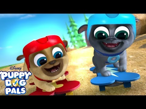 Feels Like We're Flying | Music Video | Puppy Dog Pals | Disney Junior