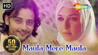 मौला मेरे मौला | Maula Mere Maula | Anwar (2007) | Siddharth Koirala | Nauheed Cyrusi | Best Song