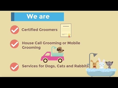 Mobile Pet Grooming Singapore | Likeable Pets
