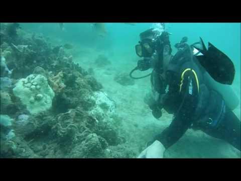 PALAWAN 2016 - EXPLORING PANDAN ISLAND