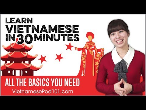Learn Vietnamese in 30 Minutes - ALL the Basics You Need