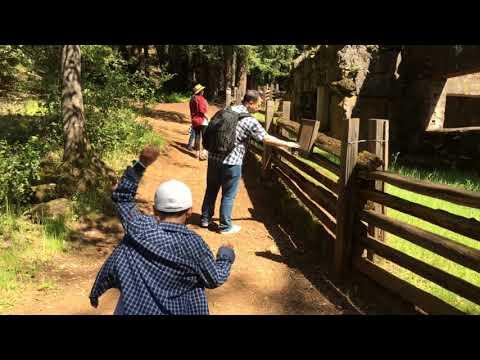 DJI OSMO MOBILE 2 [TEST] - Jack London State Historic Park, California