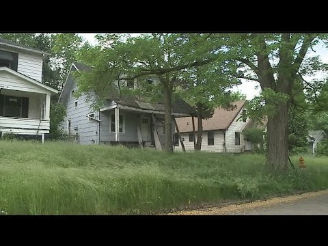 Council delays decision on who should cut Youngstown's high grass