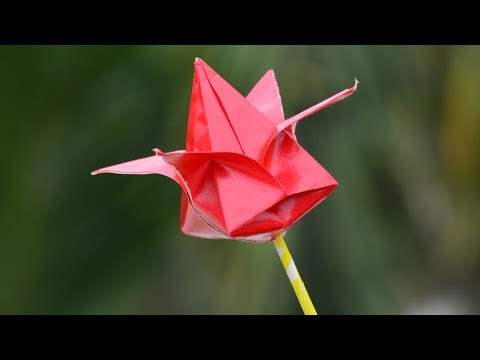 How to Make Paper Flowers Easy Step by Step | Origami Lotus Flower