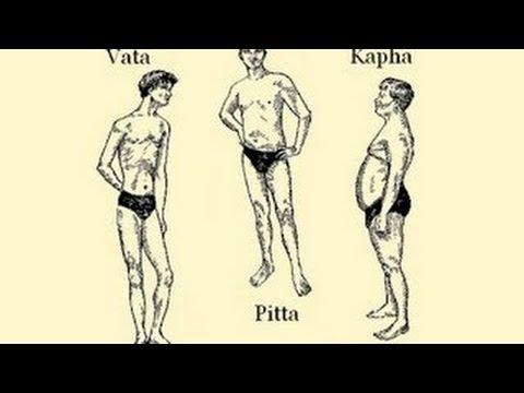 The Ayurvedic Body Types and their Characteristics (Vata, Pitta, Kapha)