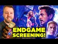Avengers Endgame Exclusive Screening With New Rockstars