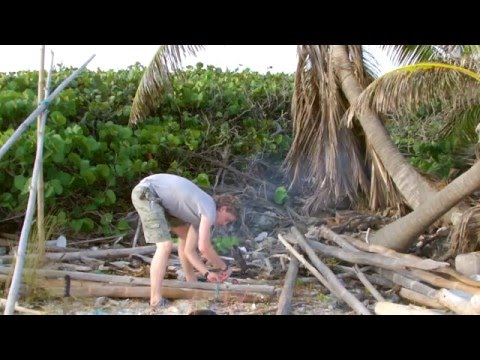 How to survive in the tropics #1
