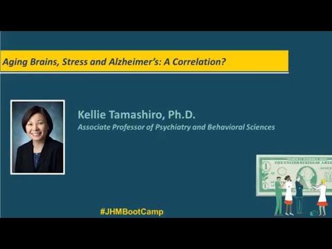 Aging Brains, Stress and Alzheimer's: A Correlation? | Kellie Tamashiro, Ph.D.