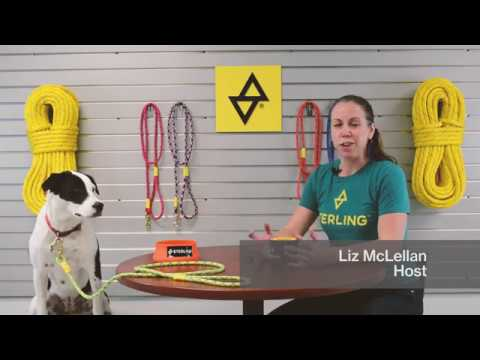 Between Two Hanks, Episode 4: Sterling Dog Leashes, Featuring Lucy the Dog