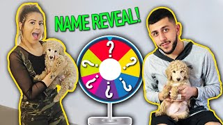 WHAT DID WE NAME HIM? *SPIN THE WHEEL GAME*