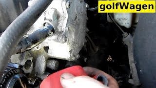 Timing belt & water pump kit replacement VW Golf Mk5, Jetta