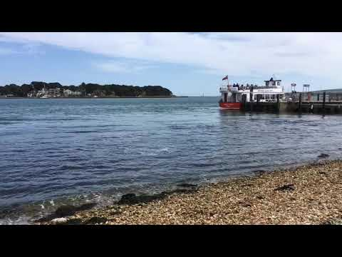 Busy day on Brownsea Island