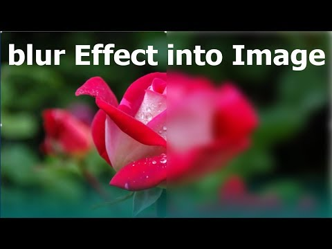 How to Add blur Effect into Image in Microsoft Word 2017