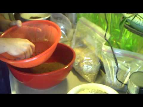 How To Make Baby Chick Starter Food