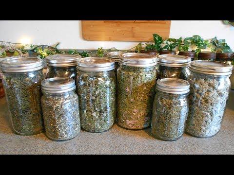 Garden Herb Tea Blend