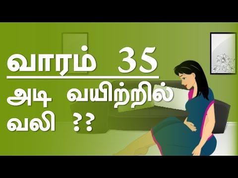 The Pregnancy   week  by week   Tamil   Week 35