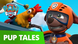 Ridiculous ROOSTER Rescue with Chickaletta and Zuma! 🐓 PAW Patrol Pup Tales Rescue Episode!