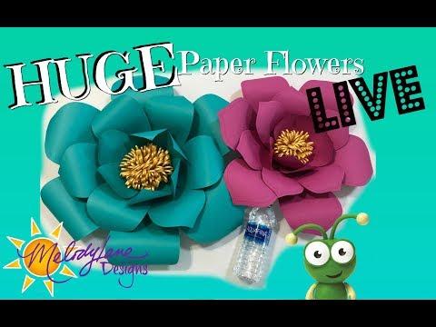 Large Paper Flowers LIVE Cut with Cricut