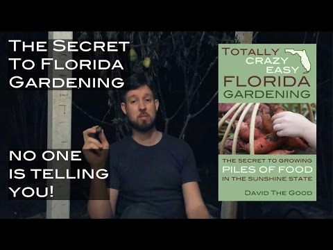 The secret to Florida gardening no one is telling you