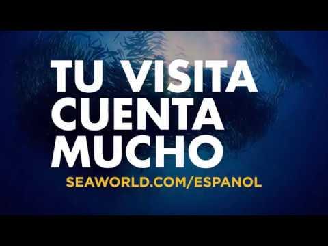 Desde Nuestro Parque Hasta El Planeta   SeaWorld