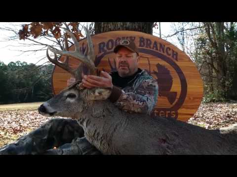 Another Successful Hunt with Rocky Branch Outfitters in Southern Illinois