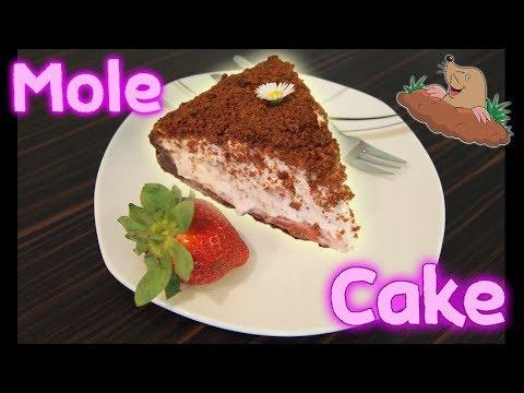 No Bake Mole Cake Recipe (with cake leftovers)