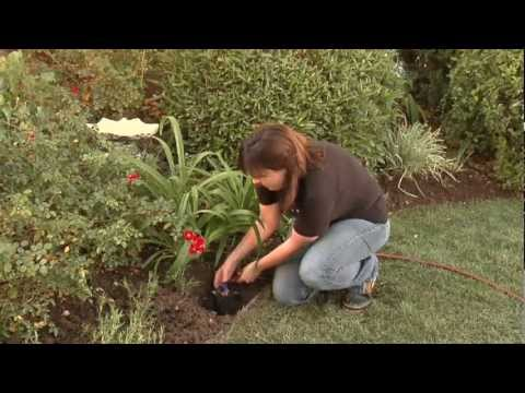 How to Install a DIY Drip Irrigation System to your Sprinkler System