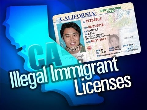 110,000 ILLEGAL IMMIGRANTS RECEIVED DRIVER'S LICENSES IN CALIFORNIA IN ONE MONTH.