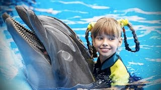 Dolphins 🐬 Smart, Beautiful, Funny Dolphins! [Funny Pets]
