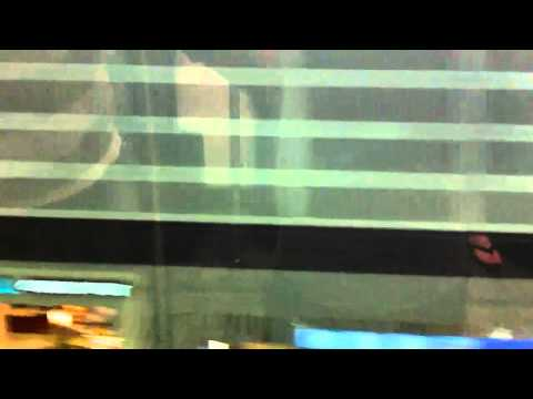 Detroit airport tram